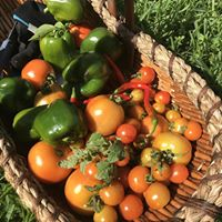 sustainable farming courses